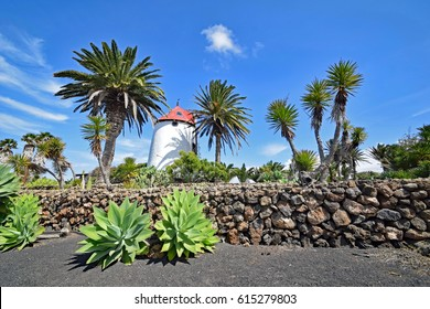 Tiagua, Lanzarote, Spain, - 28 February 2017. Traditional Spanish windmill at Museo Agricola  El Patio, in the village of Tiagua on the island of  Lanzarote