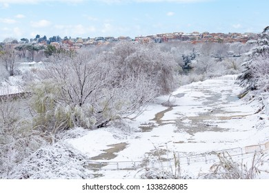 Tiber River Shore in Rome after snowfall