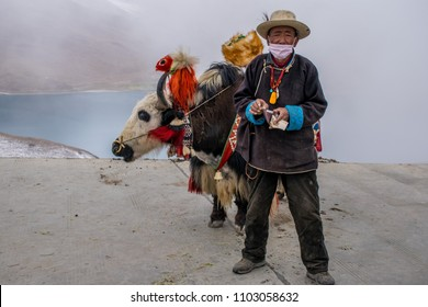 Tibet / China - May 2016: The yak rider offering to ride on yak with big horns and a beautiful saddle and a body cloth in traditional Tibetan style near the sacred lake Yamdrok-Tso.