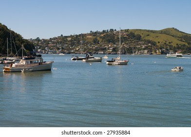 Tiburon peninsula and Raccoon Strait from Angel Island, San Francisco Bay, California