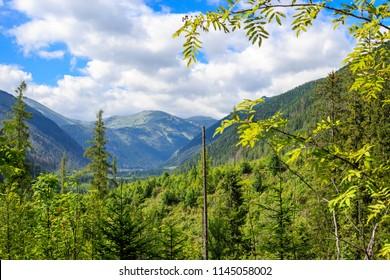 Ticha dolina valley protected area of the national park TANAP Slovakia
