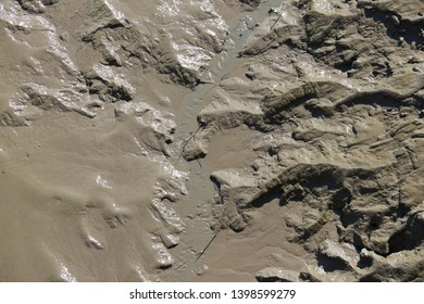 Tidal creek - Tidal channel - Creek