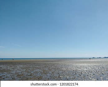 Tidal Mudflats stretch to horizon under clear blue sky.