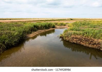 Tidal salt marsh creek on the North Norfolk coast, UK