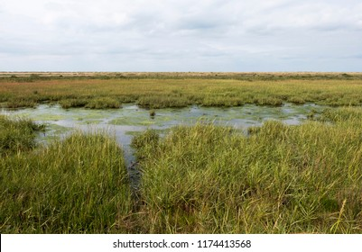 Tidal salt marshes on the North Norfolk coast, UK