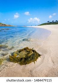 The tide laps against a golden, sandy beach beneath a beautiful blue sky at Pelistry Bay. Island of St Mary's, Isles of Scilly.