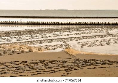 tideland at the seashore of the northern sea