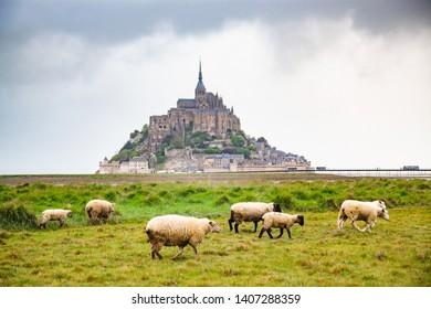 tidelands with Mont Saint-Michel, English Channel, Way of St. James, Route of Santiago de Compostela, Basse-Normandie