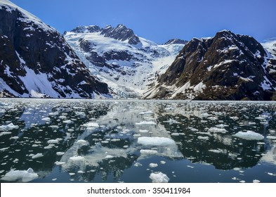 Tidewater glacier in Kenai Fjords National Park