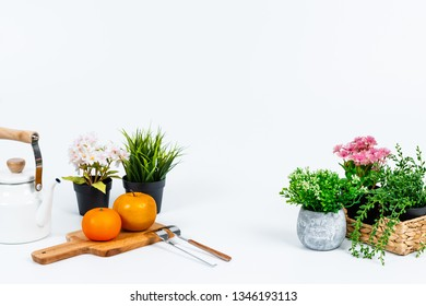 Tidy flowers or fruits and various kitchen tools on the white background.