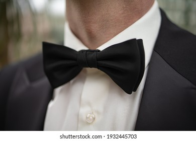Tie Butterfly Close-Up. Wedding Groom Suit