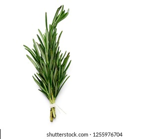 tied rosemary isolated over white background with copy space