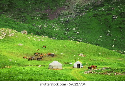 Tien Shan range, Bishkek - Osh highway. Amazing scenic view, kyrgyz yurt - traditional nomad apartment and herd of horses against the background of green high mountain slope, Kyrgyzstan, Central Asia