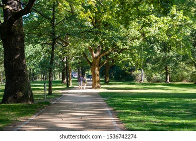 Tiergarten Park is the iconic and central park of Berlin