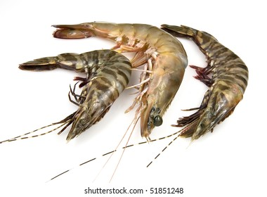 Tiger and Banana Prawns raw and fresh from the ocean