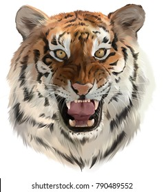 The tiger growls watercolor painting