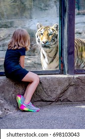 tiger and little girl face to face