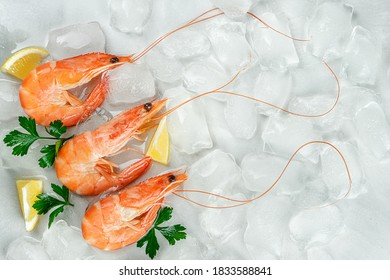 Tiger prawns on ice background with lemon and parsley. Flat lay, copy space