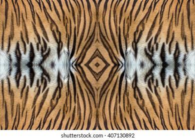 tiger skin texture.