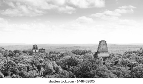 Tikal in Guatemala, an ancient Mayan city in ruins surrounded by jungle in stunning black and white