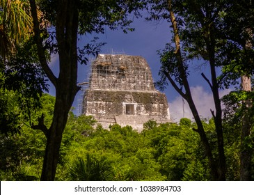 TIKAL, GUATEMALA - AUGUST 11, 2008: Temple IV, at the Mayan ruins of Tikal, located  in El Peten department, Tikal National Park.