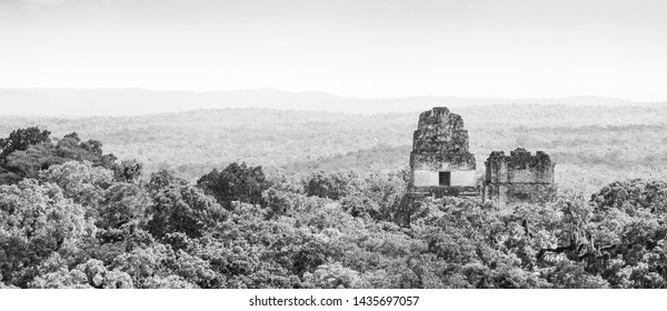 Tikal ruins in Guatemala with thick tropical jungle in stunning black and white
