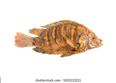 tilapia fish deep fried isolated on white in top view