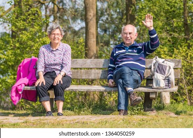 TILBURG-APRIL 7, 2019. Cheerful elderly couple on a wooden bench. The Dutch population is ageing rapidly. The main causes are decline of the fertility rates since 1970s and rising life expectancy.