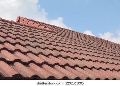 tile roof and sky