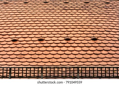 tile roof with snow grid protection