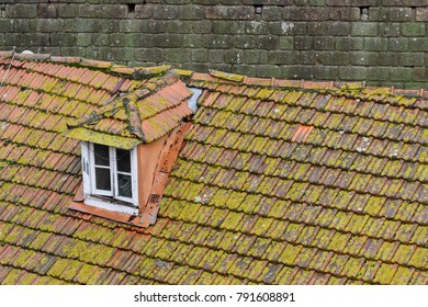 Tiled roofs in Porto, Portugal