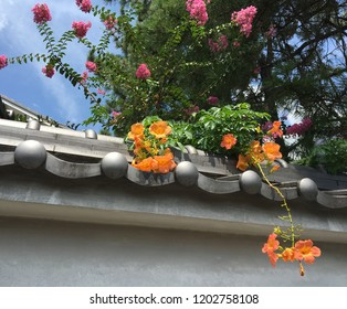 Tile-roofed wall and bright flowers in Japan