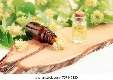 Tilia tree (linden) blossom essential oil, apothecary dropper bottles herbal tincture with flowers on wooden plank.