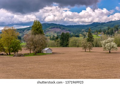 Tilled landscape in a Washington state countryside.