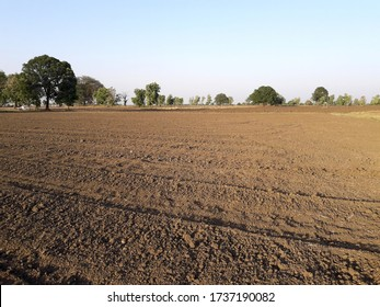 Tilled soil. Preparationbegins after your last harvest or during fallow period.