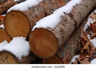 Timber covered with snow