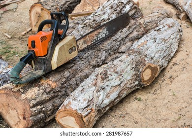 Timber cutting wood with  old saw, chainsaw and blade.