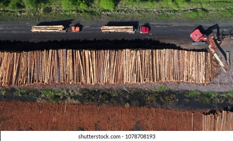 timber industry log trucks unloading logs at a lumber yard.