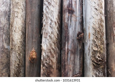 Timber poles with rough exterior