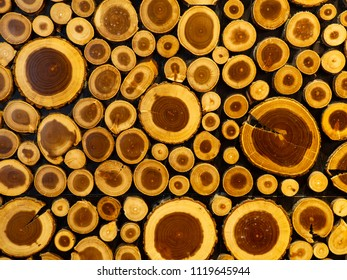 Timber texture. Background consisting of logs. Wood texture with natural patterns
