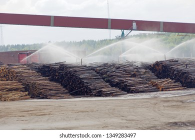 Timber waitiing to be pulp at the pulp and paper mill