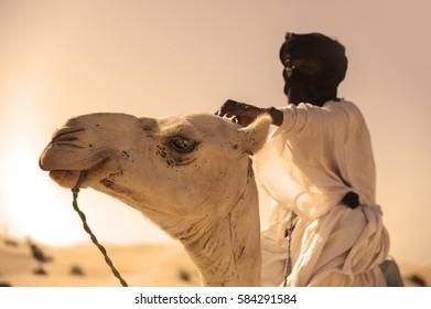 Timbuktu, Mali, Africa - september 2, 2011 Tuareg with camel near Timbuktu