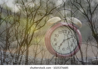 Time changes everything concept. Clock and dry tree in autumn season.