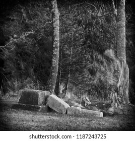 time exposure photo of an apparition in a graveyard