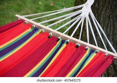 Time for a Rest on a Hammock