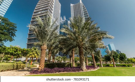 Timelapse view on skyscrapers at park with palms. Residential buildings covered with glass in Jumeirah Lake Towers in Dubai, UAE.  The JLT is a large development which consists of 79 towers with