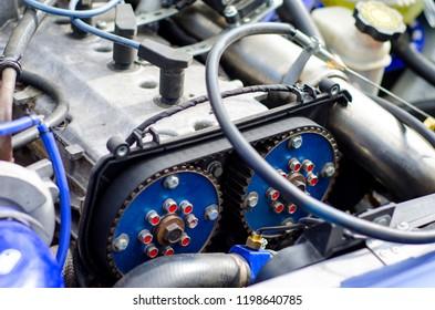 Timing belt and camshaft sprocket in engine.