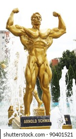 TIMISOARA, ROMANIA August 29:  Statue of Arnold Schwarzenegger in front of Olimpia Sport Center   August 29, 2010.