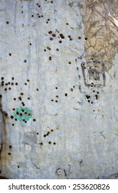 Tin texture with rust and bullet holes