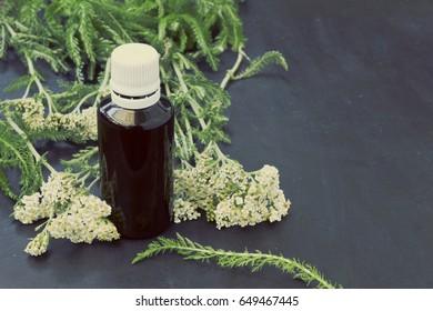 Tincture of yarrow (Achillea millefolium) in the bottle close-up -vintage look